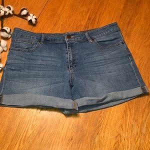 New York & Company Shorts